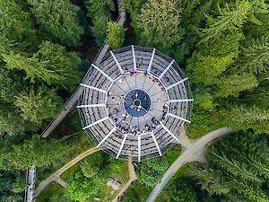 Baumwipfelpfad im Bayer. Wald